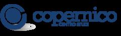 Demo Webinar Copernico